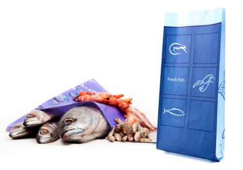 fish3-newton-packing-1000x700