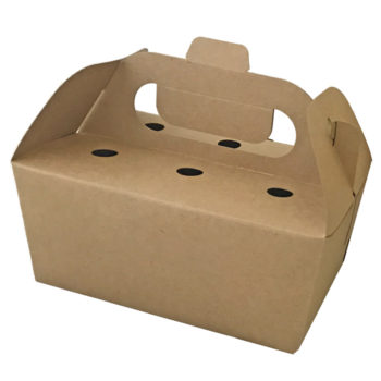 chickenbox-newton-packing-700x700